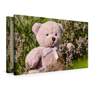 Premium Textil-Leinwand 90 cm x 60 cm quer Lila Lavendelbär