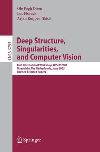 Deep Structure, Singularities, and Computer Vision