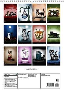 Niedliche Katzen (Wandkalender 2016 DIN A3 hoch)