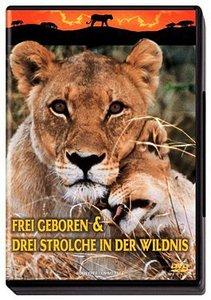 Frei geboren / Drei Strolche in der Wildnis. DVD-Video