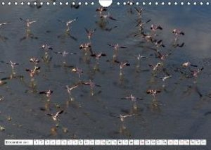 Flamingo Impressions UK-Version (Wall Calendar 2015 DIN A4 Lands