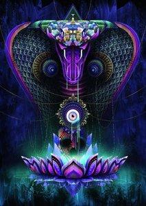 Chris Saunders, Heilige Kobra. Puzzle 1000 Teile