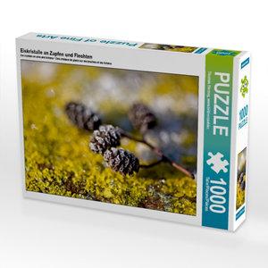 Eiskristalle an Zapfen und Flechten 1000 Teile Puzzle quer