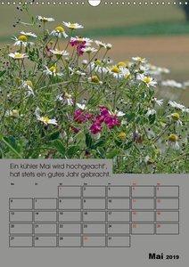 Wetter-Regeln der Bauern (Wandkalender 2019 DIN A3 hoch)