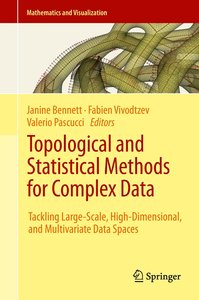 Topological and Statistical Methods for Complex Data