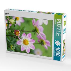 CALVENDO Puzzle Dahlien 1000 Teile Lege-Größe 48 x 64 cm Foto-Pu