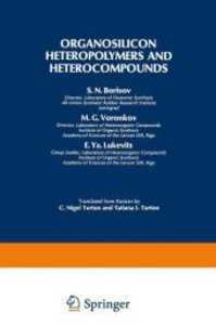 Organosilicon Heteropolymers and Heterocompounds