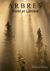 ARBRES. Forêt et Lumière (Calendrier mural 2015 DIN A3 vertical)