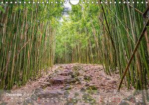 Hawaii - Maui Trauminsel im Pazifik (Wandkalender 2019 DIN A4 qu