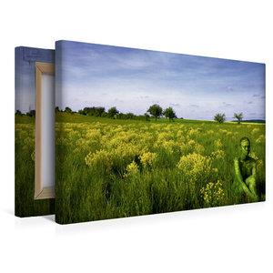 Premium Textil-Leinwand 45 cm x 30 cm quer Brachfläche bei Gaste