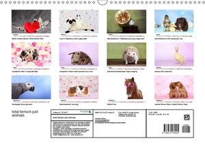total tierisch just animals (Wandkalender 2019 DIN A3 quer)