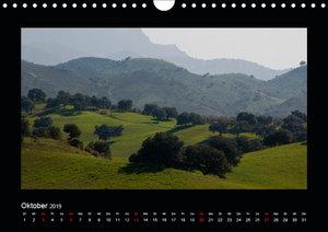 Landschaften Andalusiens (Wandkalender 2019 DIN A4 quer)