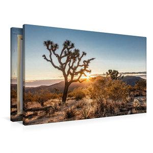 Premium Textil-Leinwand 90 cm x 60 cm quer Joshua Tree National
