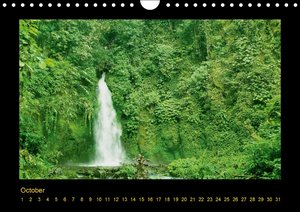 Bali - Island of Gods and Demons (Wall Calendar perpetual DIN A4