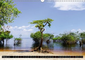 Amazonas - Faszination Regenwald
