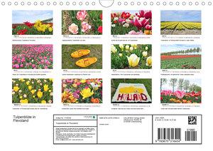 Tulpenblüte in Flevoland 2020