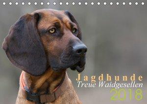 Jagdhunde - Treue Waidgesellen