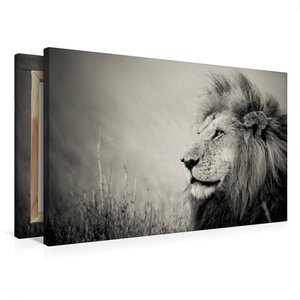 Premium Textil-Leinwand 75 cm x 50 cm quer The Lion King