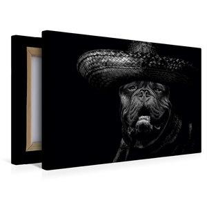 Premium Textil-Leinwand 45 cm x 30 cm quer Bulldogge Molosser Bi