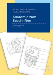 Anatomie zum Beschriften