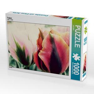 Tulpen 1000 Teile Puzzle quer