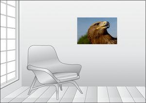 Premium Textil-Leinwand 75 cm x 50 cm quer Steinadler