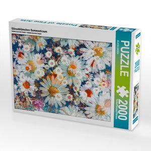 CALVENDO Puzzle Gänseblümchen Sommertraum 2000 Teile Lege-Größe