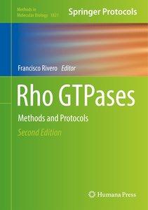 Rho GTPases