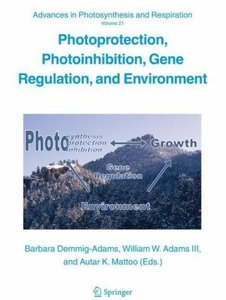 Photoprotection, Photoinhibition, Gene Regulation, and Environme