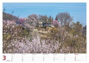 Neustadt an der Weinstraße 2020 Bildkalender A3