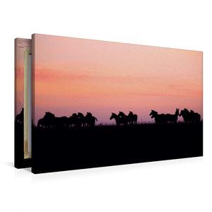 Premium Textil-Leinwand 90 cm x 60 cm quer Zebras in der Masai M