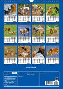 Hunde Freunde (Wandkalender 2020 DIN A3 hoch)