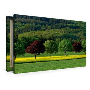 Premium Textil-Leinwand 90 cm x 60 cm quer Sommerfarben im Idste