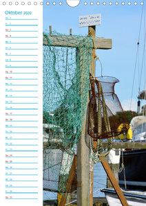 Zauberhafte Schleilandschaft (Wandkalender 2020 DIN A4 hoch)