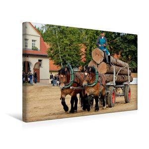 Premium Textil-Leinwand 45 cm x 30 cm quer Rheinisch- Dt. Kaltbl