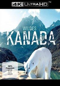 Wildes Kanada 4K, 1 UHD-Blu-ray