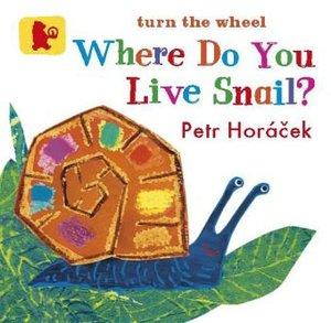 Where Do You Live Snail?