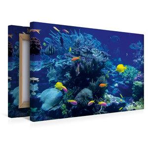 Premium Textil-Leinwand 45 cm x 30 cm quer Korallenriff