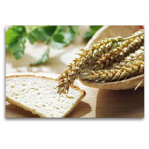 Premium Textil-Leinwand 120 cm x 80 cm quer Frisches Getreide zu