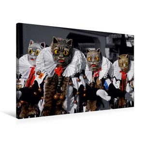 Premium Textil-Leinwand 75 cm x 50 cm quer Meßkircher Katze