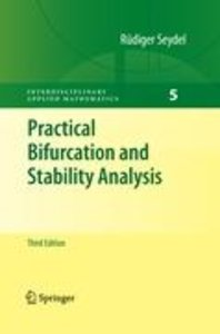 Practical Bifurcation and Stability Analysis