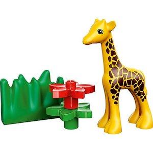 LEGO 4962 - Duplo Ville: Tierbabys