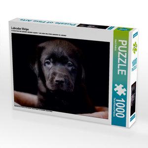 Labrador Welpe 1000 Teile Puzzle quer