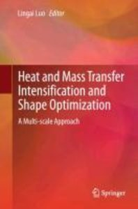 Heat and Mass Transfer Intensification and Shape Optimization