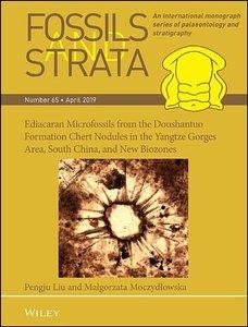 Ediacaran Microfossils from the Doushantuo Formation Chert Nodul