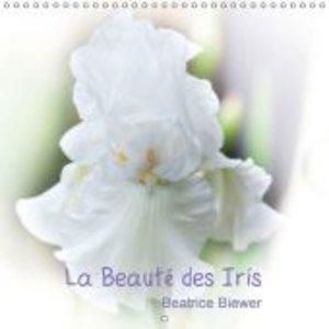 La Beauté des Iris (Calendrier mural 2015 300 × 300 mm Square)