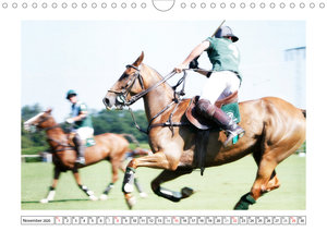 Pferdesport Polo (Wandkalender 2020 DIN A4 quer)
