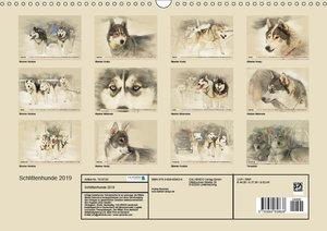 Schlittenhunde 2019 (Wandkalender 2019 DIN A3 quer)