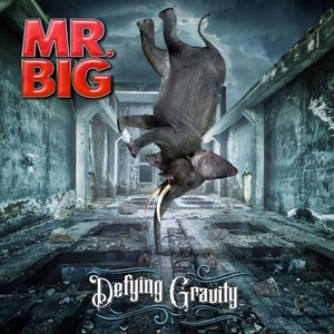 Defying Gravity (Limited Gatefold/Black Vinyl)