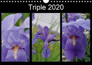 Triple 2020 (Wall Calendar 2020 DIN A4 Landscape)